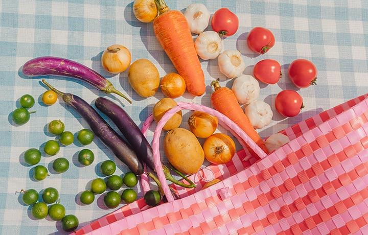 Eat The Rainbow With Sandy Cheeks' Bayong Bag And Veggie Kit