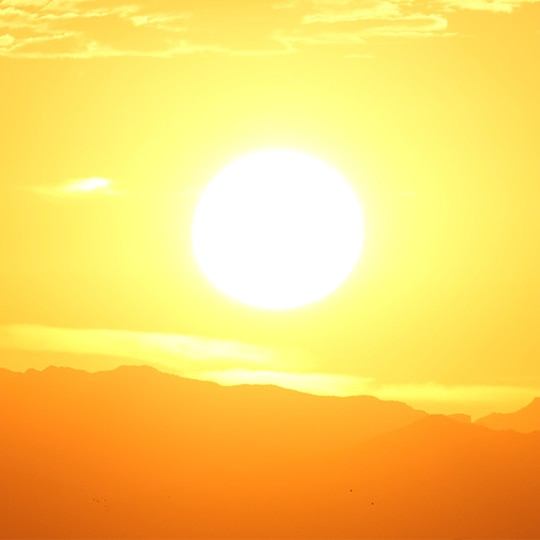 A US Study Found That Sunlight Can Possibly Kill Coronavirus. Here's What We Know So Far!