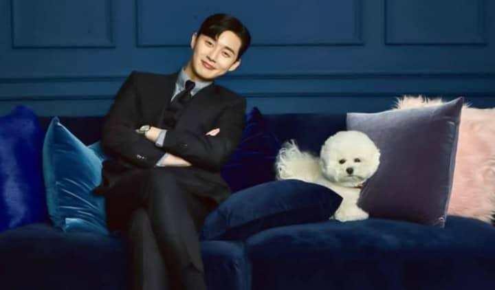 Park Seo-Joon's Darling Simba