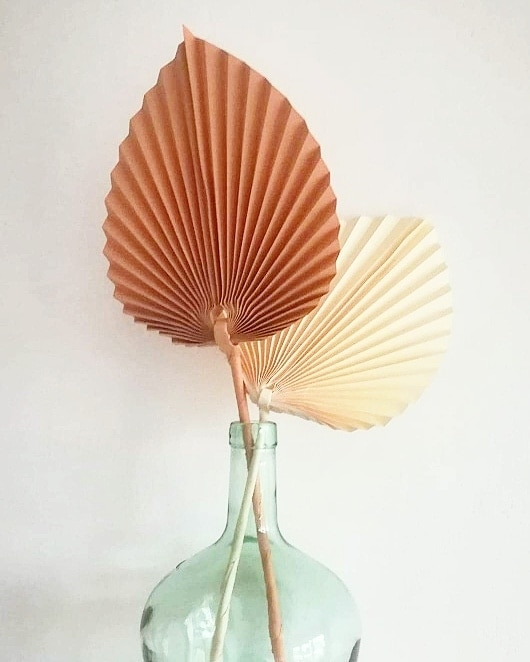 Ways to Use the Paper Palm At Home