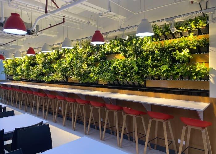 Plant walls by Flax Midori